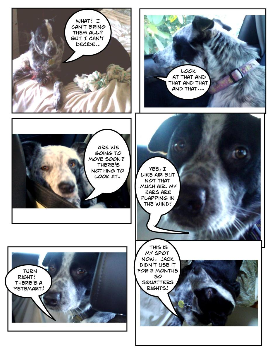 Traveling Dog Tales