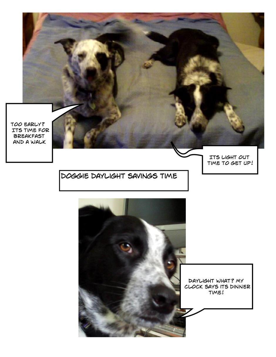 Doggie Daylight Savings Time