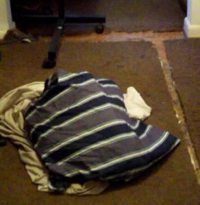Dog Bed Hurl