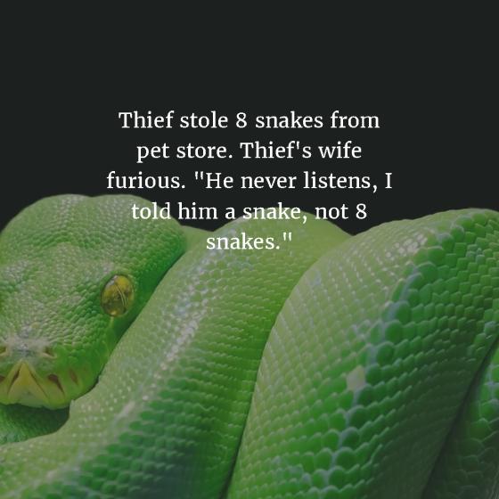 snake-joke