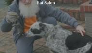 Rat Salon