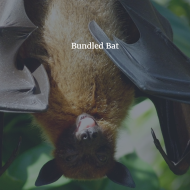 Bundled Bat
