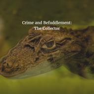 Crime and Befuddlement: The Collector