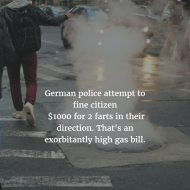 Farts in the News