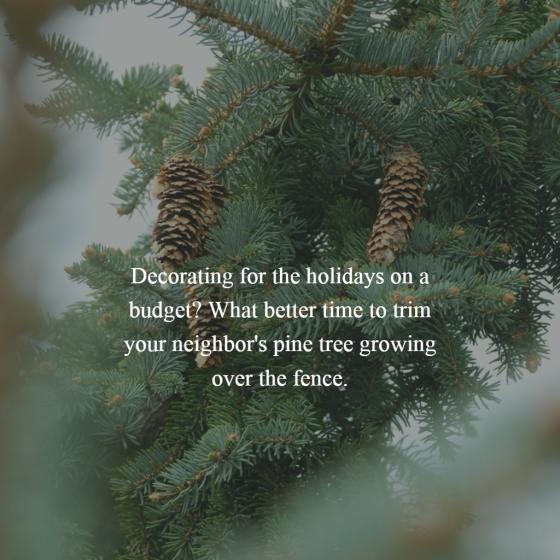 Trimming Pine