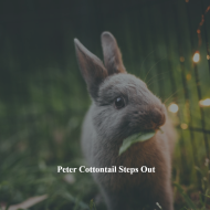 Peter Cottontail Steps Out